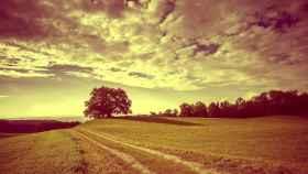 Un camino en el campo en una imagen de archivo.