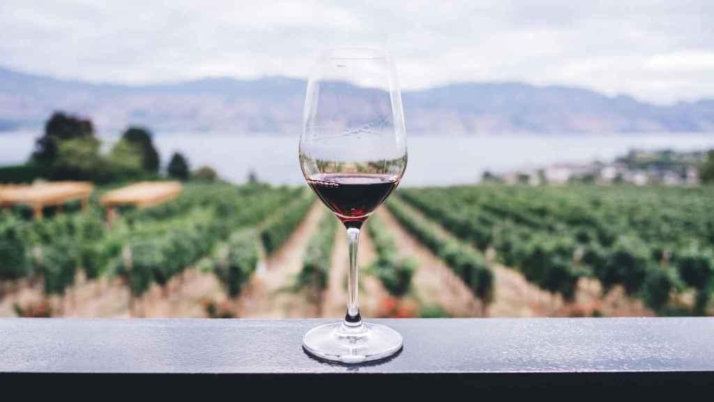 La cercanía del mar aporta salinidad a los vinos.