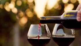 Las claves para hablar de vino sin cometer errores.