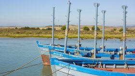 Una vuelta por la bella costa de Cádiz