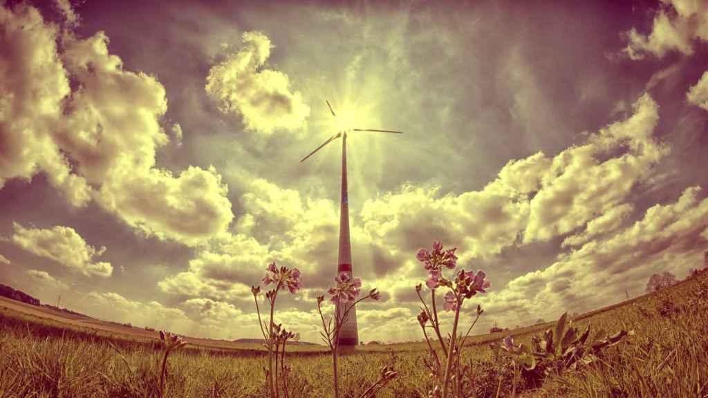 Una turbina de generación eólica en un parque renovable.