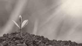 Liderazgo europeo en las finanzas sostenibles