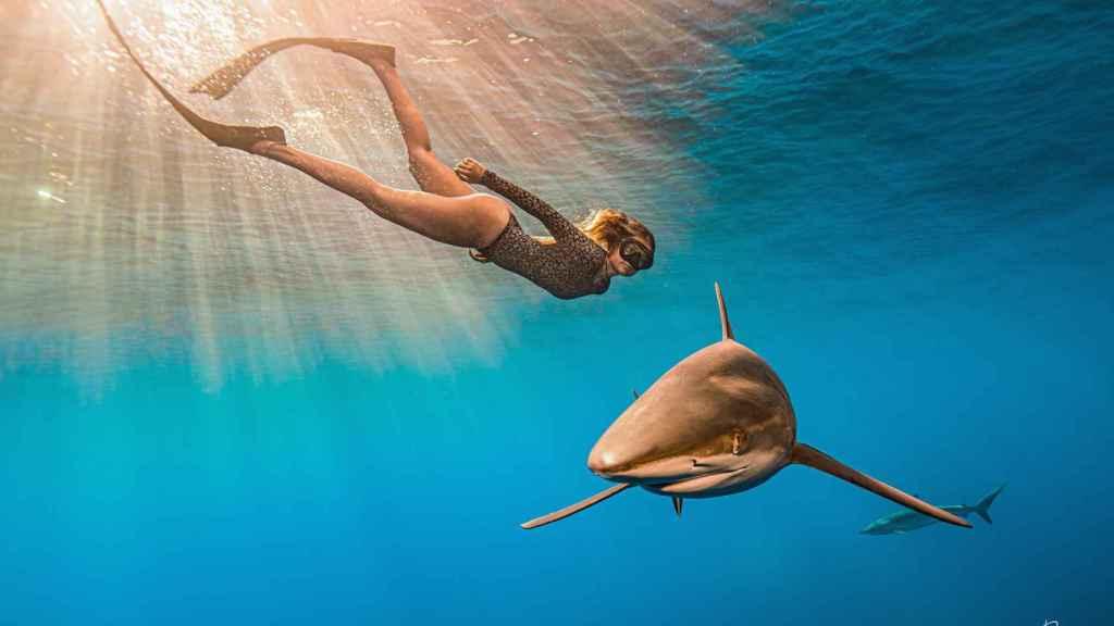 Gádor Muntaner nadando junto a un tiburón.