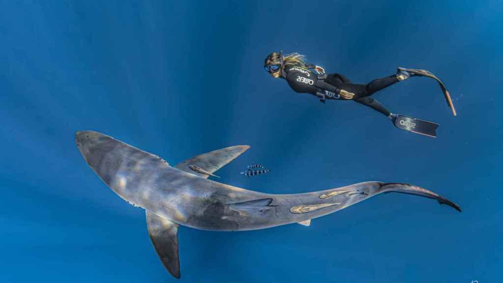 Gádor es divulgadora y vive en La Paz (México), uno de los mejores lugares para estudiar a los tiburones.