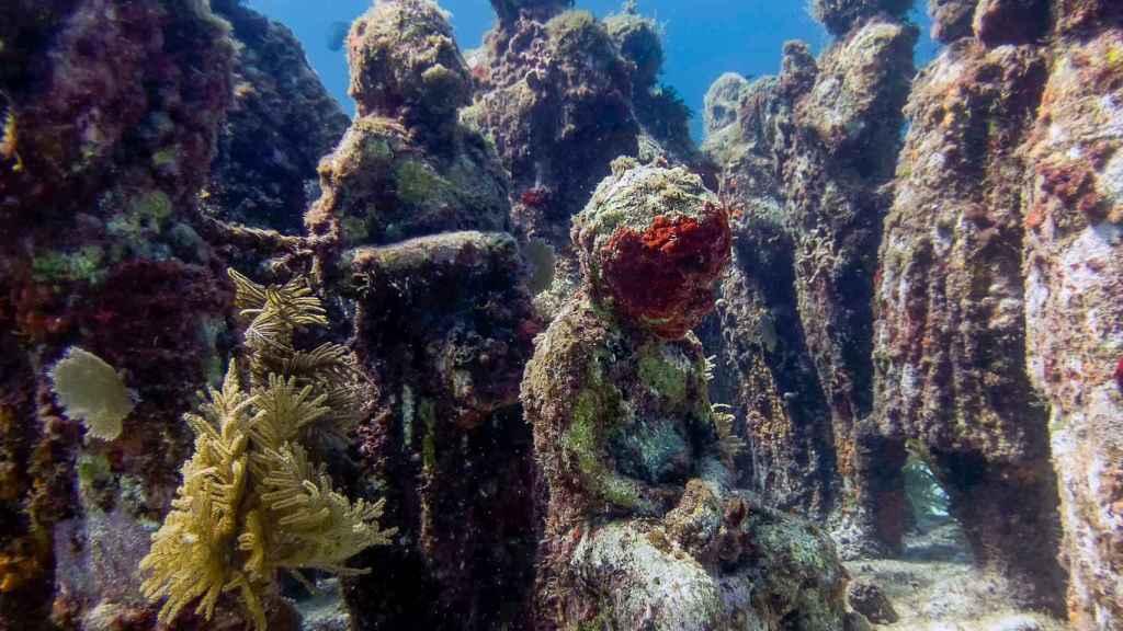 Museo Subacuático