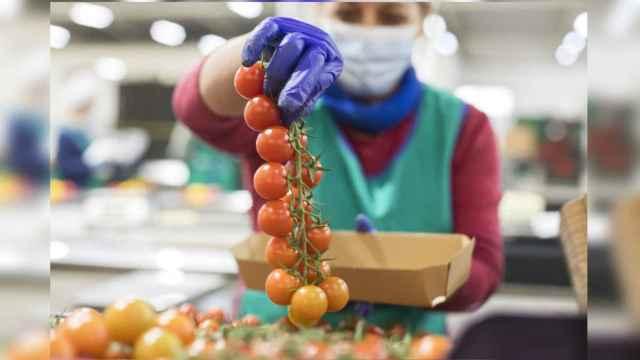 Sellos de calidad que debes buscar al comprar frutas y verduras