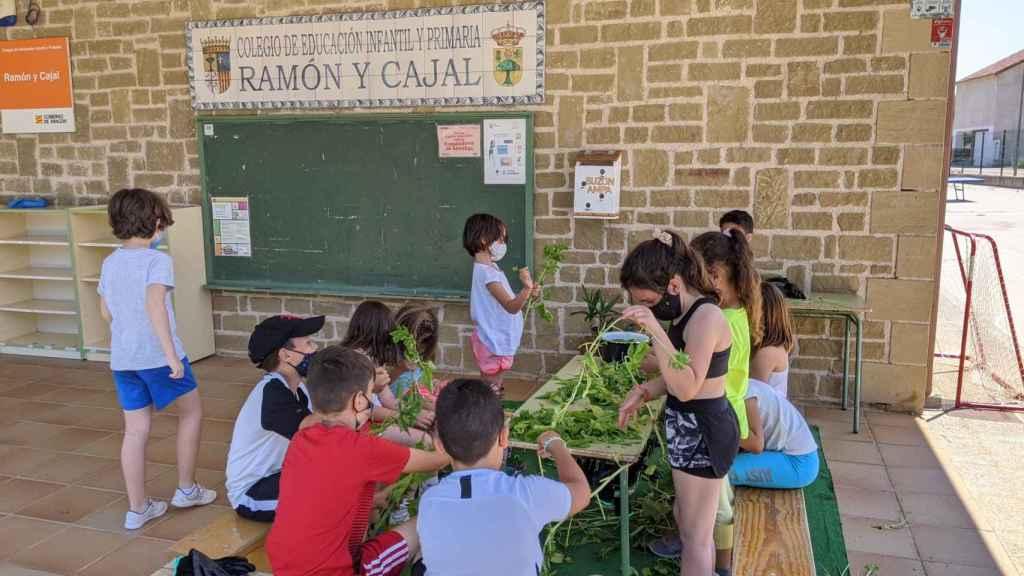 Los pequeños, en el colegio Ramón y Cajal de Alpartir (Zaragoza).