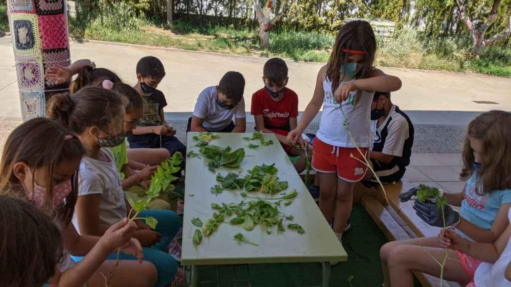 Los alumnos, durante una de las muchas actividades diarias del colegio.
