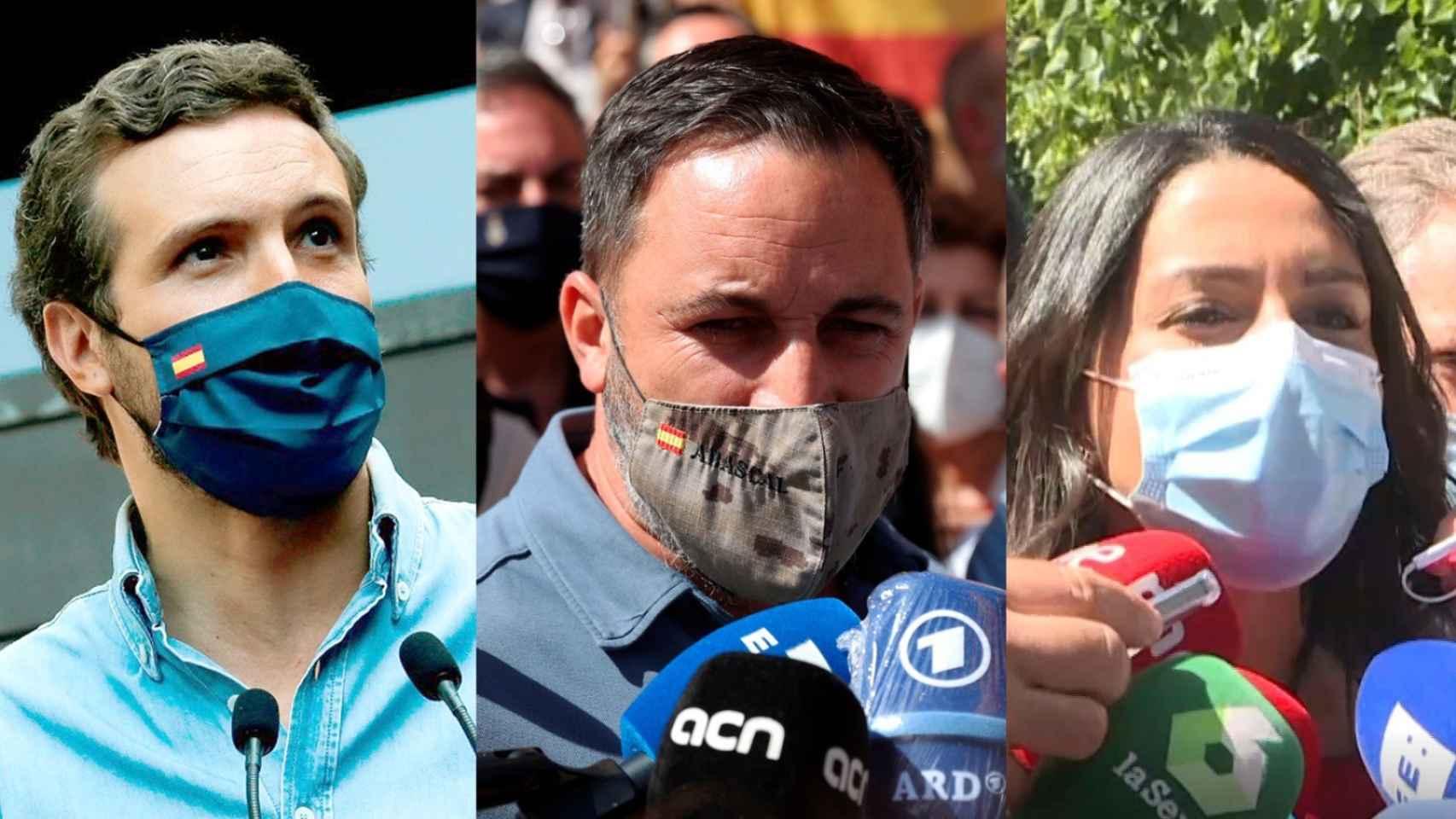 Pablo Casado, Santiago Abascal e Inés Arrimadas han acudido a la manifestación de Colón.