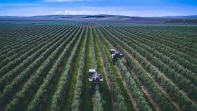 Tecnología y una gestión más eficiente del agua: cómo será la agricultura de 2050