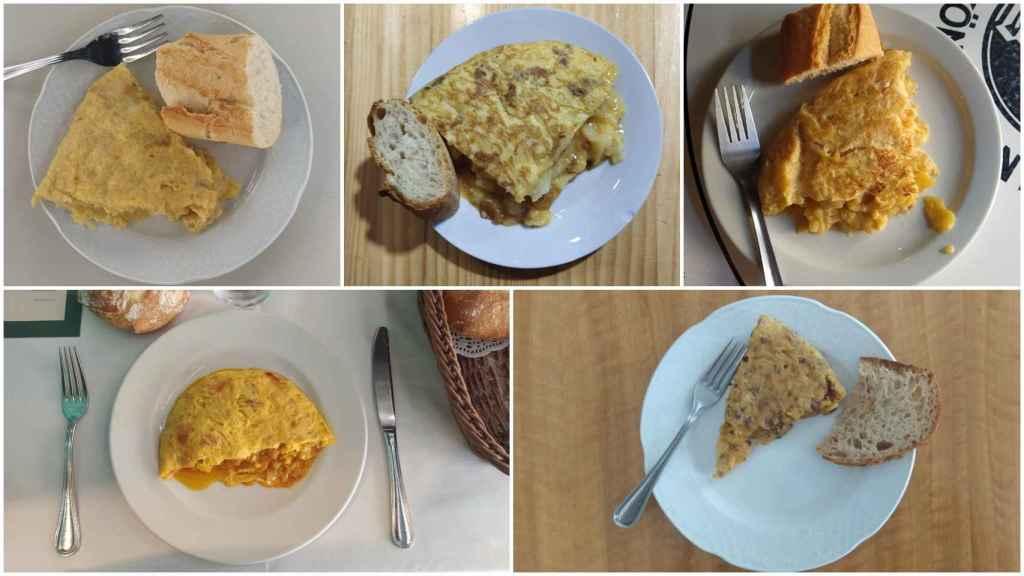 De arriba a abajo y de izquierda a derecha, las tortillas de Sylkar, Casa Dani, Bodega La Ardosa, La Penela y Colósimo.