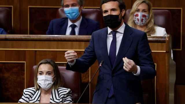 Pablo Casado, presidente del PP, en el Congreso de los Diputados.