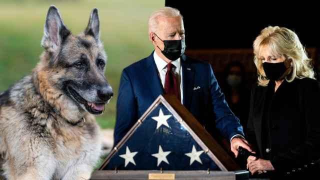 Joe y Jill Biden con su perro Champ en un montaje de Jaleos.
