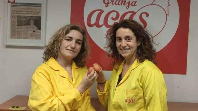 De izquierda a derecha, Rocío, Sandra  y Jaime, tres productores de huevos de gallina en España.