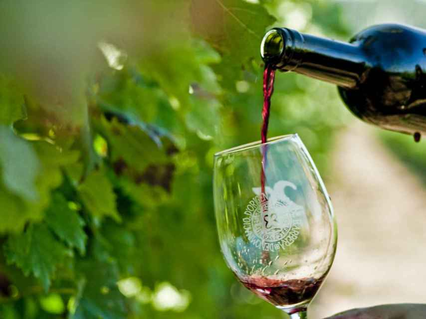 La uva trepat no es solo para hacer rosados.