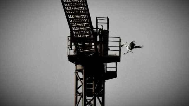 La montaña rusa de la construcción por las materias primas