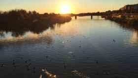 El río Tajo a su paso por Talavera de la Reina, en una imagen de archivo. Foto: E.C.