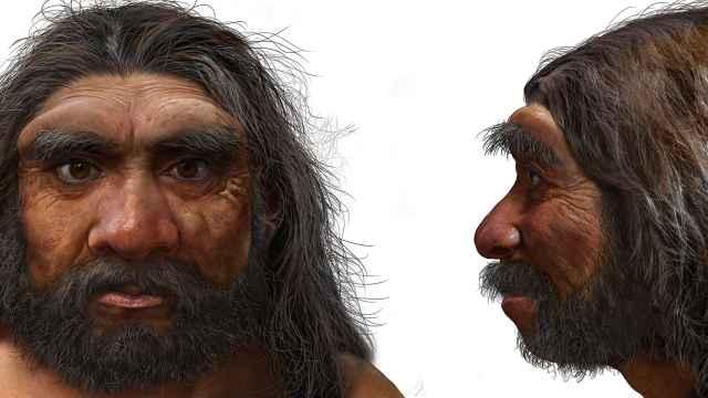 Retrato robot del 'homo Longi', el 'hombre dragón'.