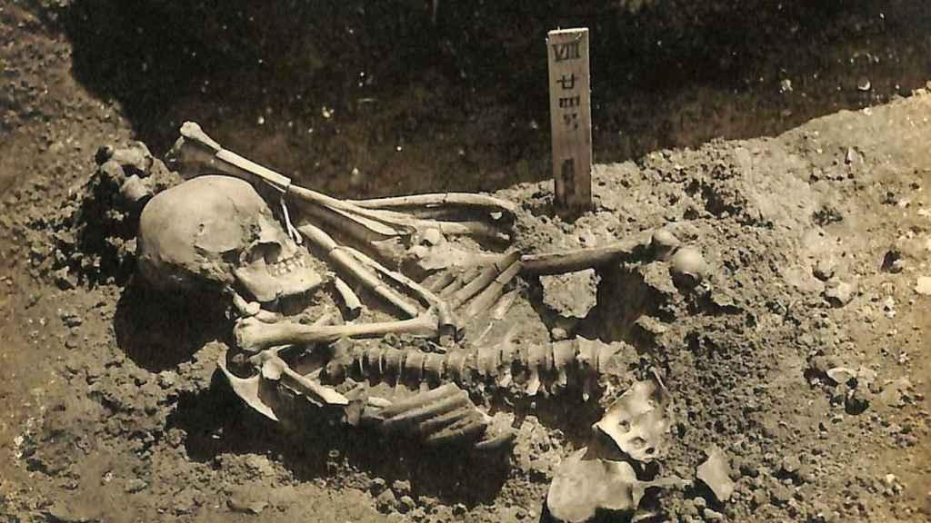 Los restos de Tsukumo 24