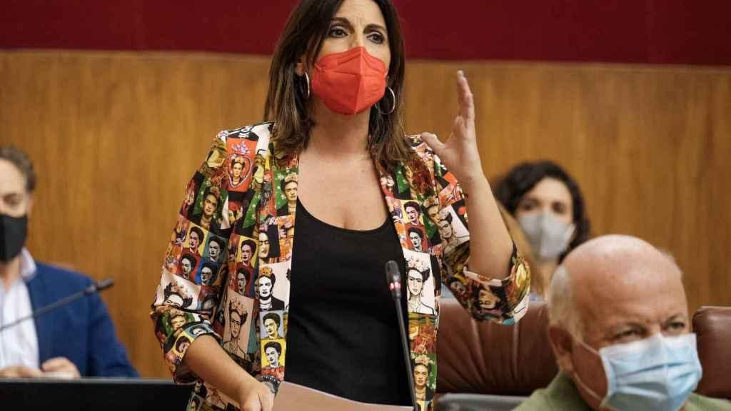 La nueva portavoz del grupo parlamentario socialista, Ángeles Férriz.