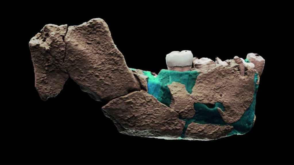 Reconstrucción virtual de la mandíbula de Nesher Ramla.