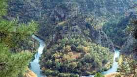 Parque Natural del Alto Tajo. Foto: EDCM