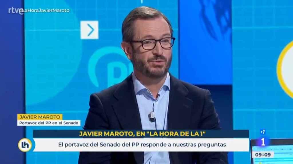 Javier Maroto, portavoz del Grupo Popular en el Senado, en TVE.