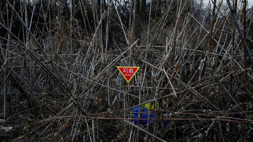 Minas antipersona cerca de la Zona Desmilitarizada.