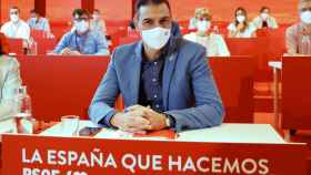 Pedro Sánchez, en el Comité Federal del PSOE celebrado este domingo.