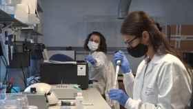 Investigadoras de Fisabio en ensayos relacionados con la Covid-19.