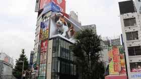Gato gigante mostrado en Tokio.