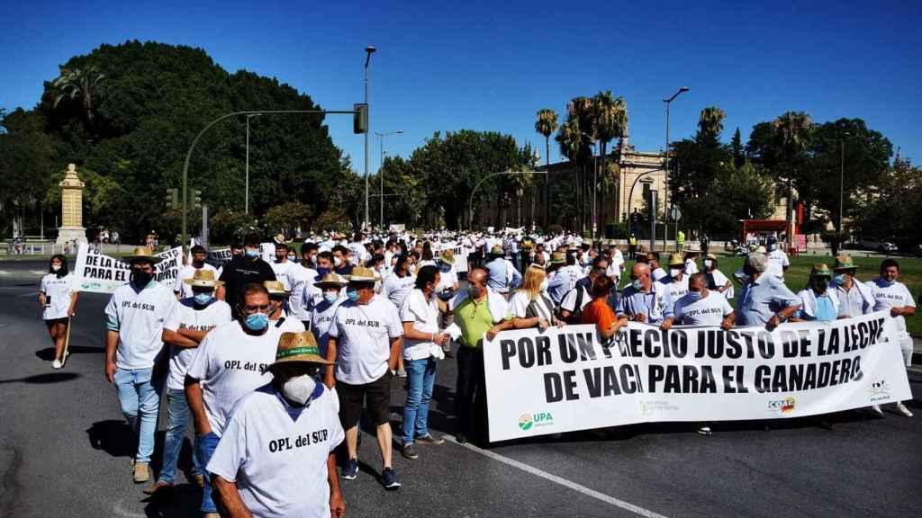 Protesta de los ganaderos en Sevilla.
