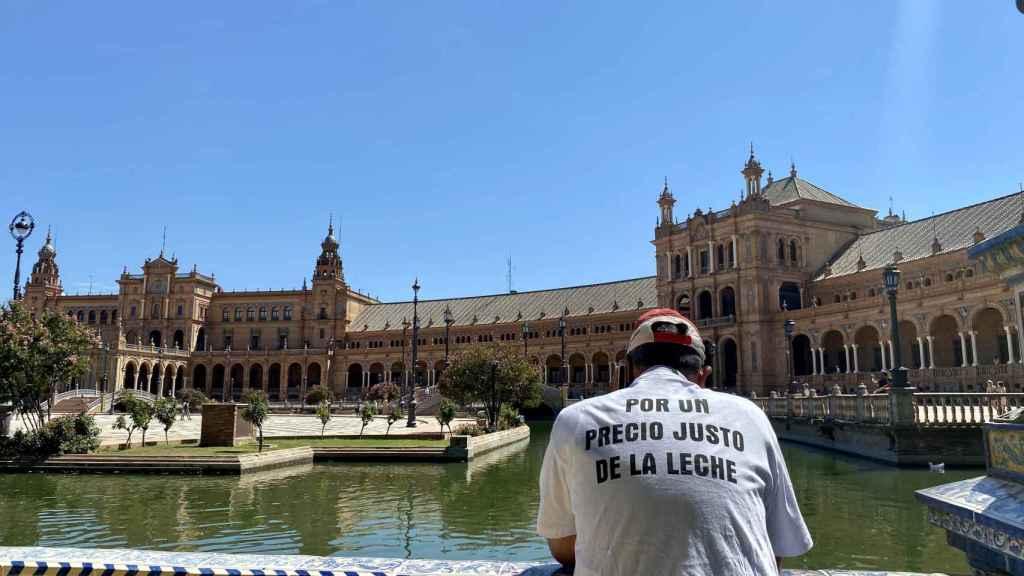 Un manifestante en la Plaza de España de Sevilla.