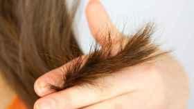 Las puntas abiertas son un problema capilar que sufrimos la mayoría de las mujeres.
