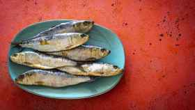 Imagen de archivo de sardinas.
