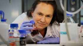 La investigadora del CNIC Marta Cortés Canteli.