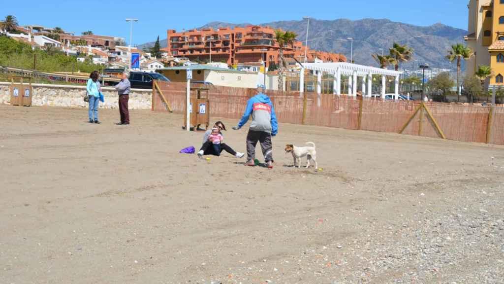 Fuengirola 'dog beach' es una de las playas de perros más célebres de Málaga.