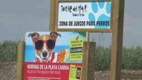 Cartel informativo en una playa canina de Fuengirola (Málaga).
