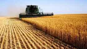 Los trabajadores industriales cobran más del triple que los agricultores en Málaga
