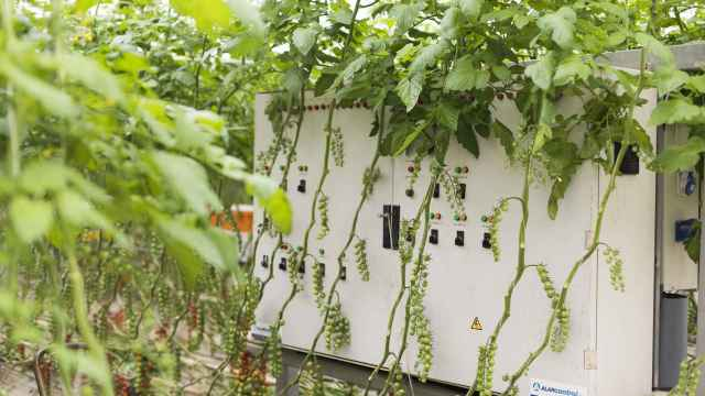 Sistema integrado de control de clima y riego para la optimización del uso de agua y fertilizantes.