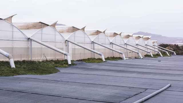 Colector de agua de lluvia y la balsa de almacenamiento cubierta con malla negra para evitar el crecimiento de algas