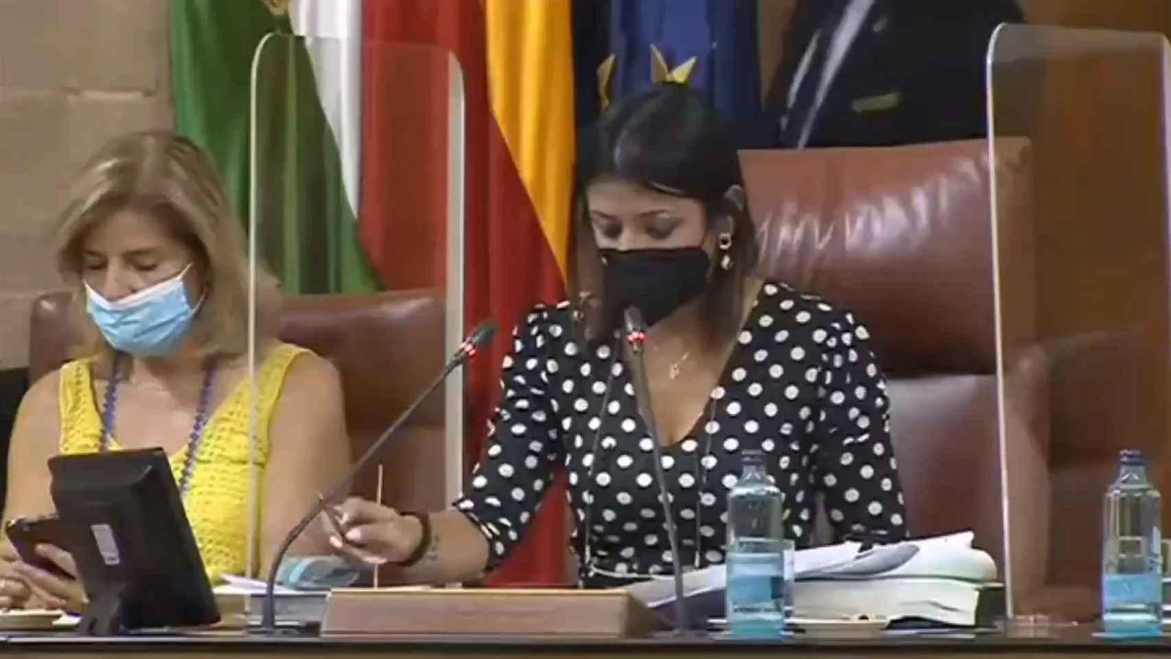 Una rata siembra el pánico en el Parlamento andaluz