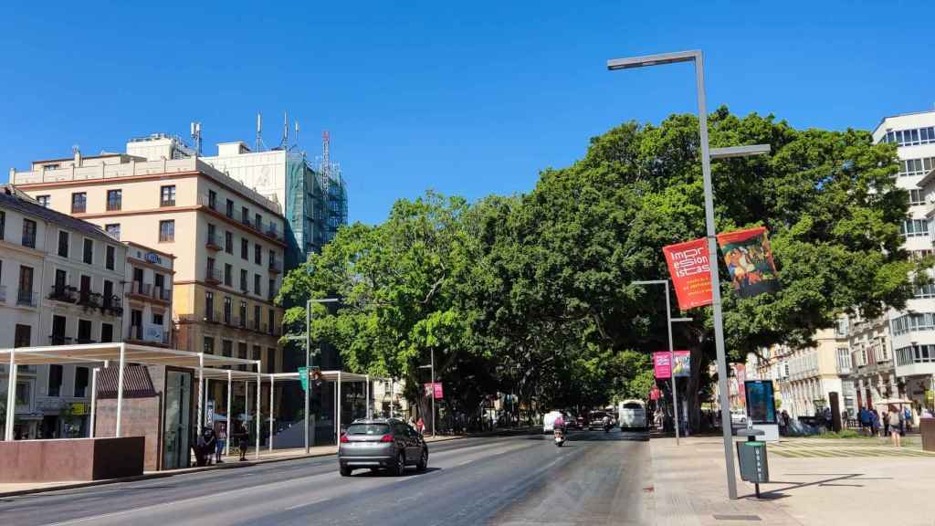 Imagen de la Alameda Principal de Málaga.