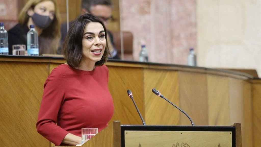 Teresa Pardo en la tribuna de oradores del Parlamento andaluz.