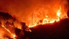 Incendio forestal en el Massís del Montgrí en el Baix Emporda (Girona), este jueves, por David Borrat.