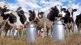 Los productores de leche, indignados porque los precios en origen están por los suelos