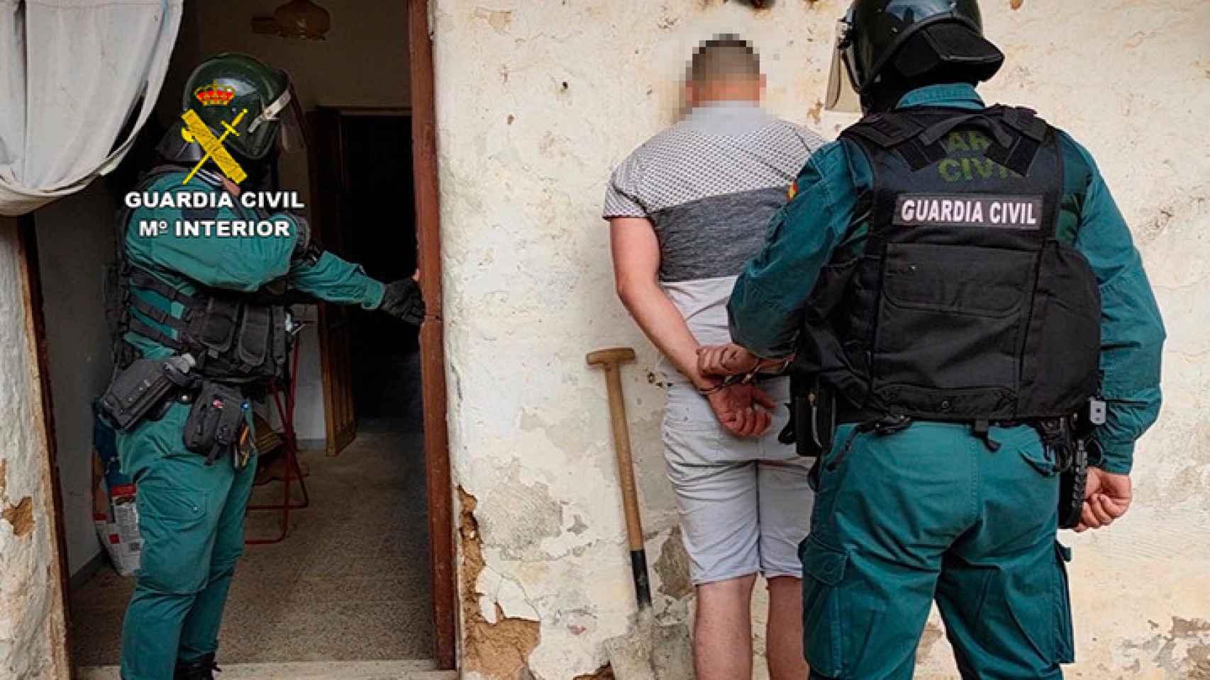 Así eran las macroplantaciones de marihuana escondidas en dos pueblos de Zamora 1
