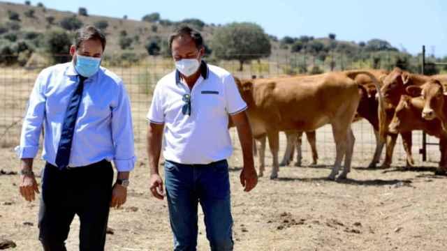 Paco Núñez, este miércoles en la localidad toledana de Pepino