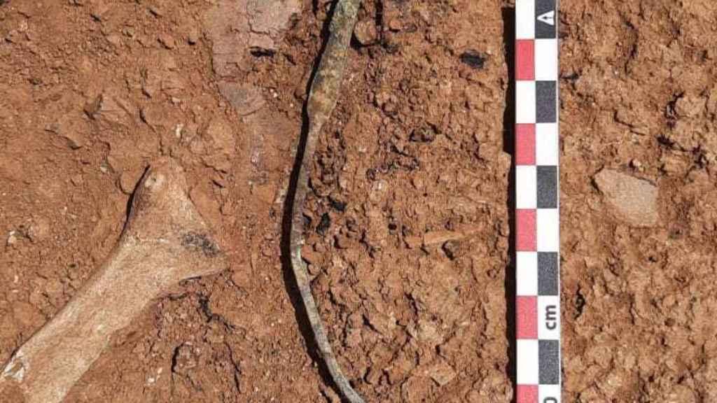 Esta sonda espátula era parte del instrumental quirúrgico romano encontrado en Son Catlar.