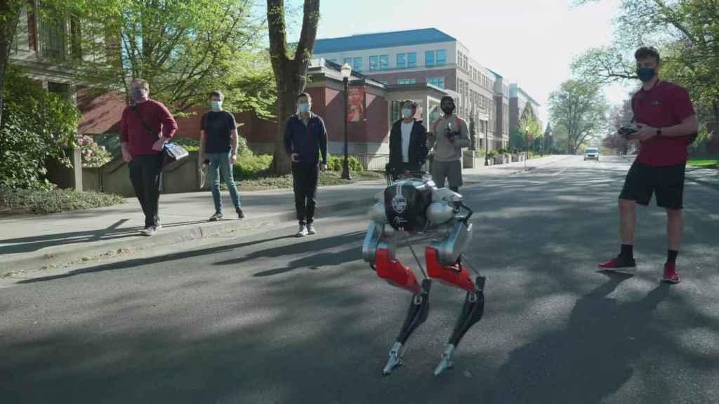 Cassie, el robot bípedo que es capaz de correr 5 km sin pararse